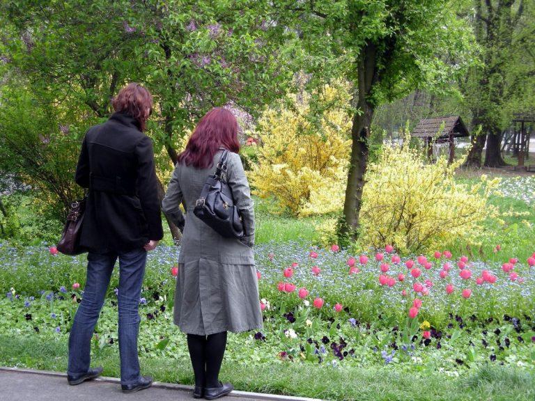 herastrau park flowers